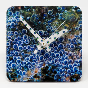 Clock showing bubbles in a pond