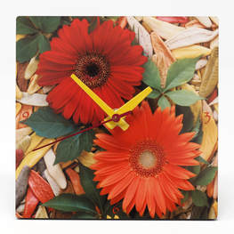 clock showing two gerbera daisies