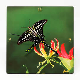 clock showing a fire lily flower and a butterfly
